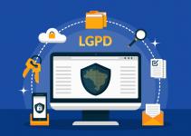 Principais pontos para entender a nova lei: LGPD