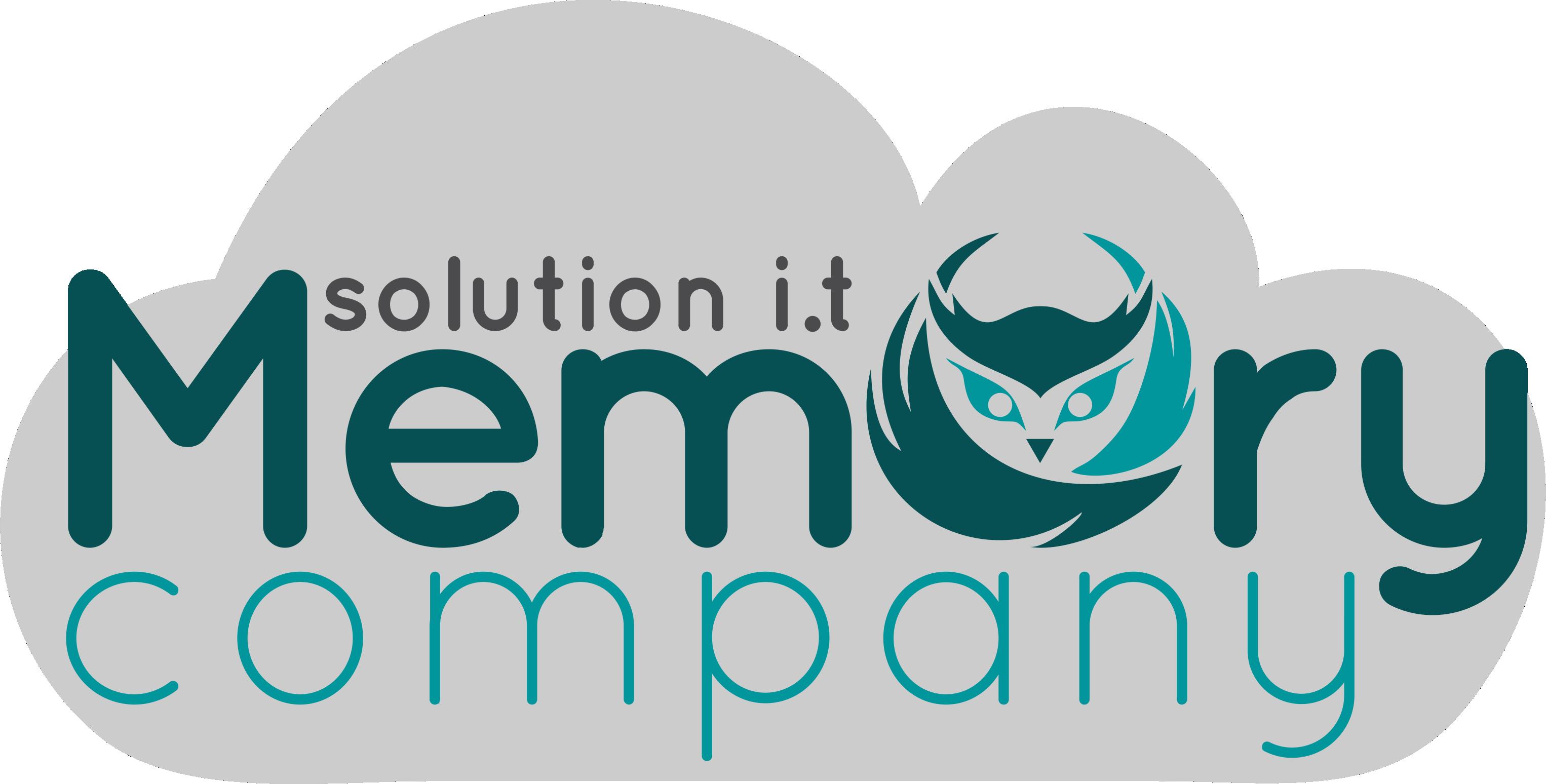 Blog Memory Company | Solution I.T